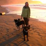 Dog Days at the Beach
