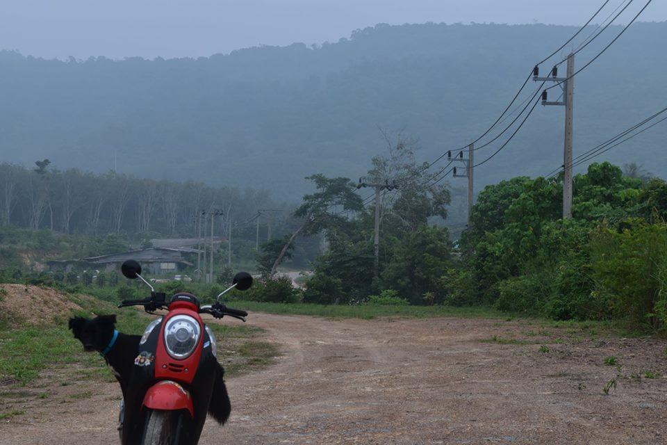 Maya riding a motorbike